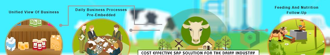 Logicaldna dairy industries sap solution