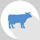 Logicaldna Dairy Industries